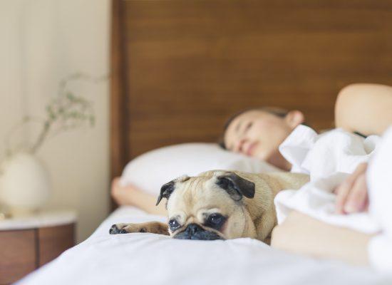 Healthy sleep routines