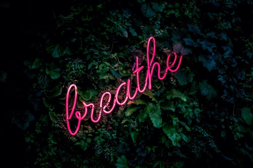 A pink neon sign saying 'breathe' on dark green leaves, Coaching by A gorgeous Soul